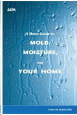 Mold Resource Guide