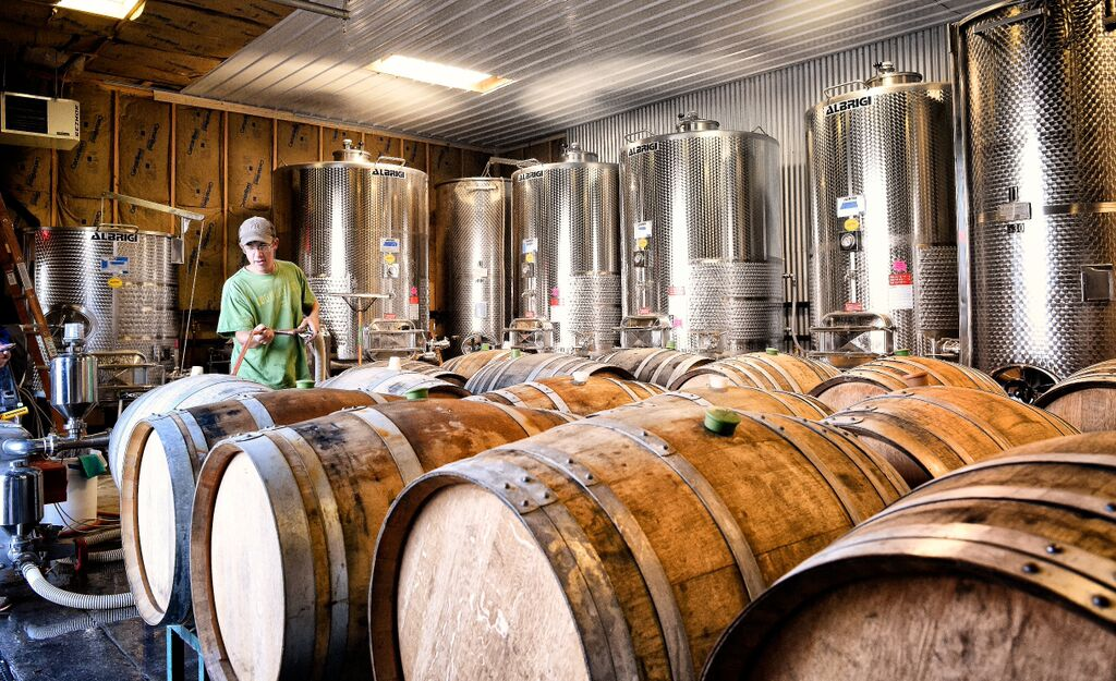 Winery kegs