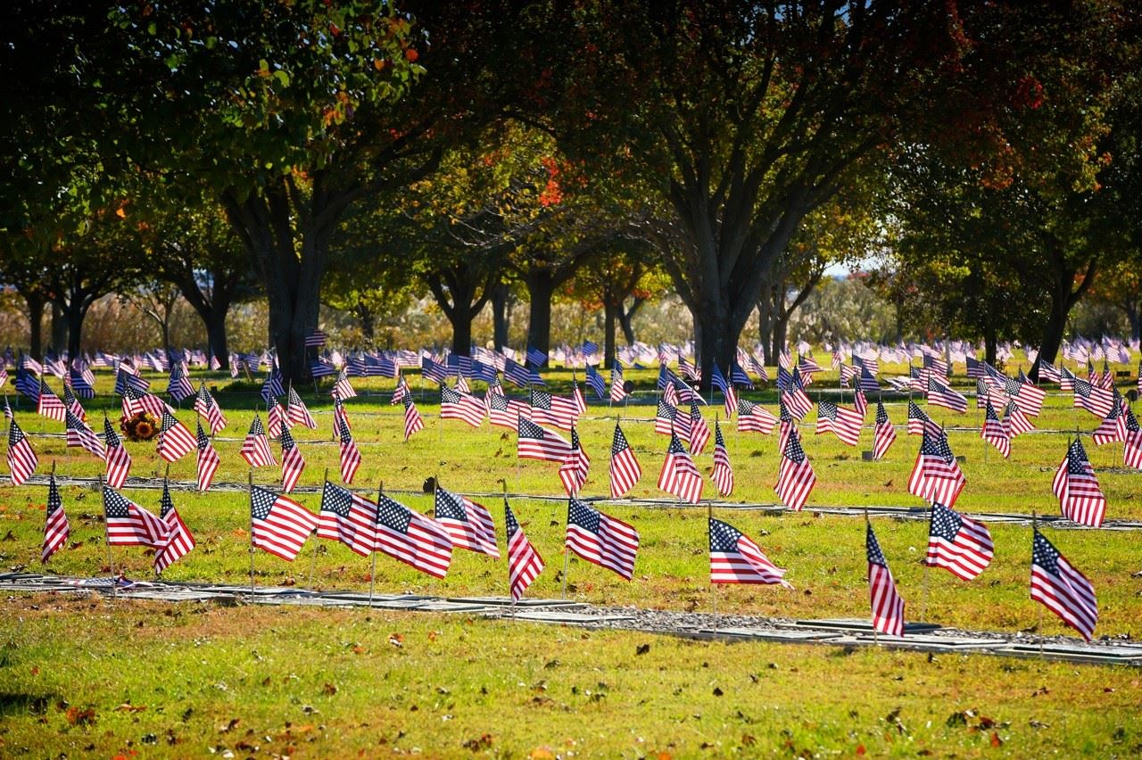 2016 Vets Day Flags