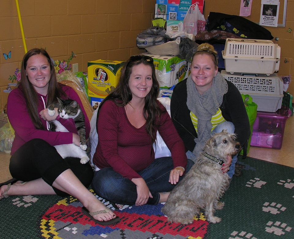 Three women sitting on floor with cat, dog and donated items