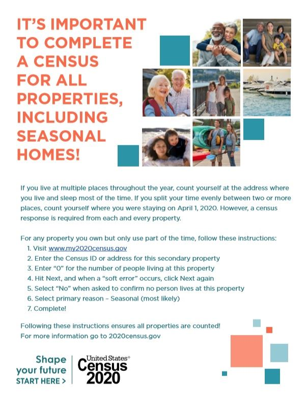 Census Flyer
