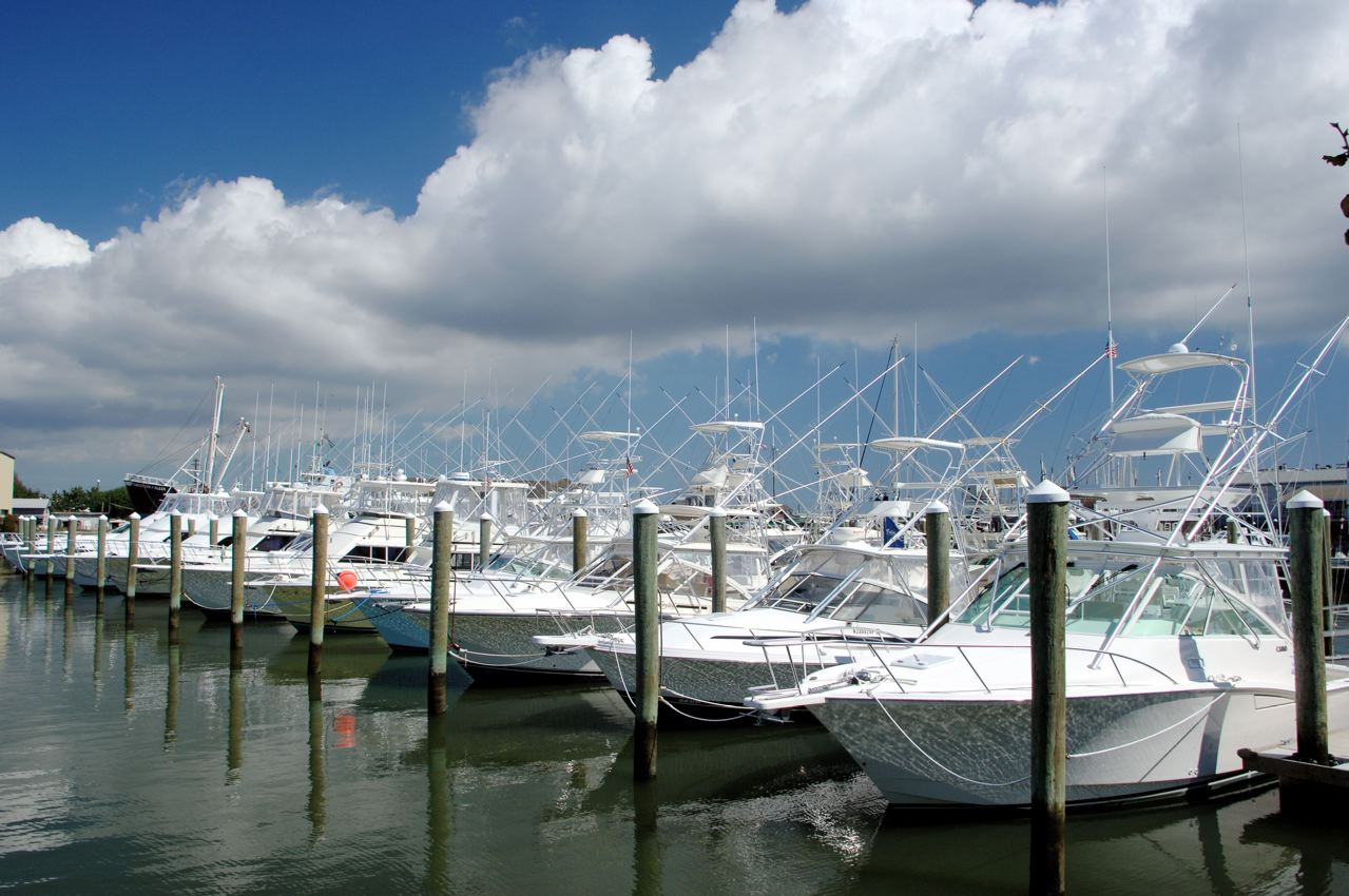 Visit the jersey cape cape may county nj official website for Cape may fishing charters